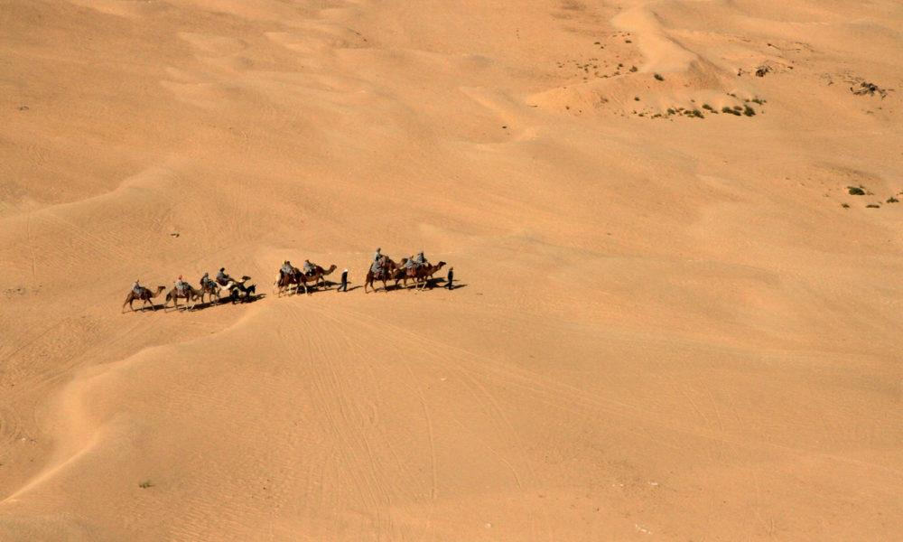 Caravan, Sahara Desert, Douz area, Tunisia